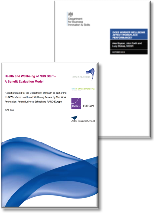 Evidence for improving staff wellbeing - picture of health service research reports